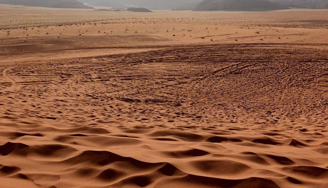 Cheeky Universe Toes Wadi Musa Jordan